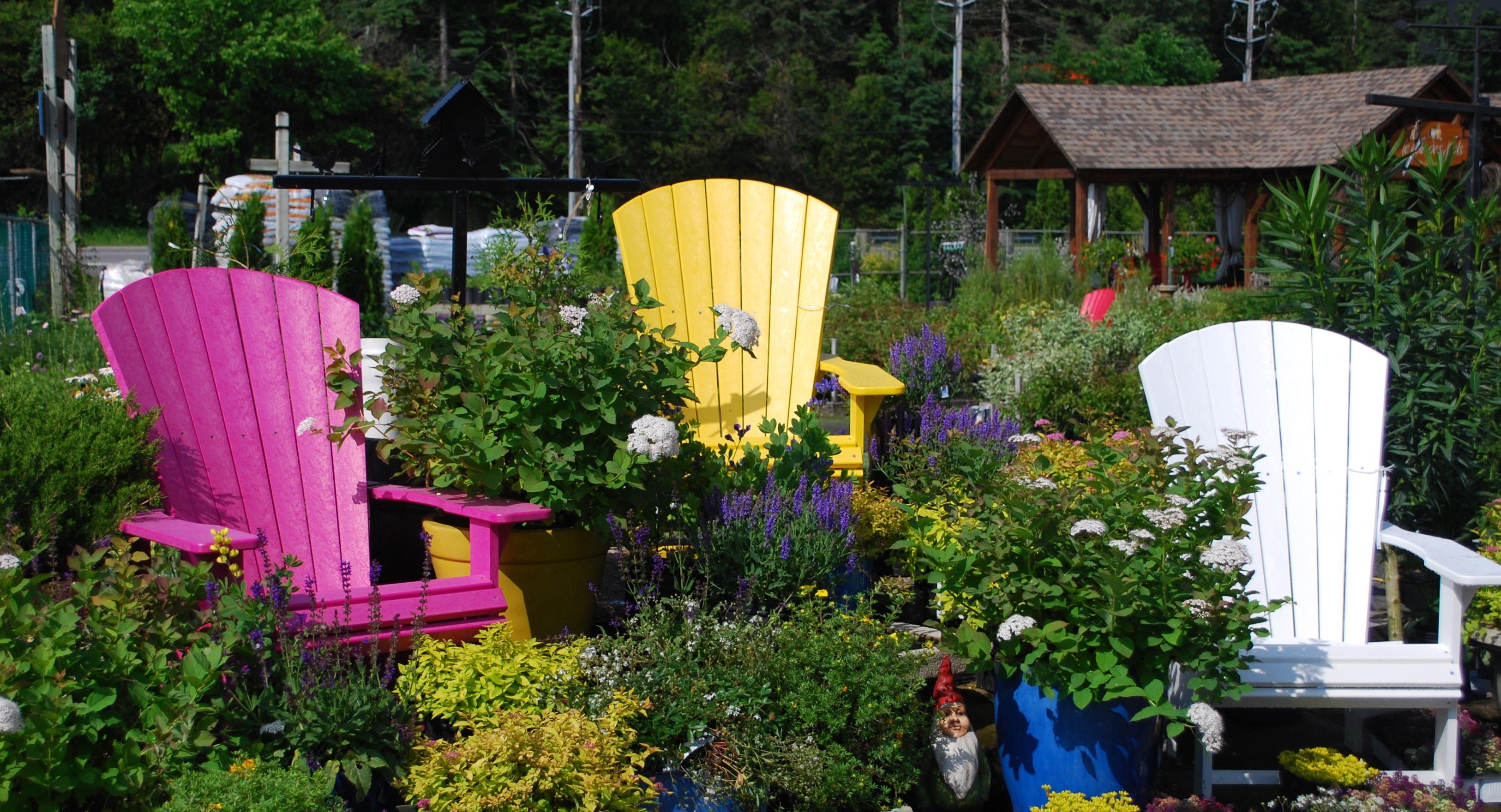 Chaises color es centre de jardin p pini re boutique for Chaises colorees